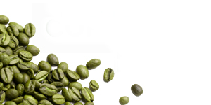 Green Coffee Reviews Pure Green Coffee Beans