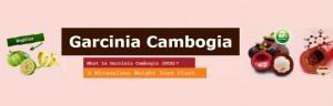 Garcinia Cambogia Benefits - Appetite Suppressant and Weight Loss Extract Supplement