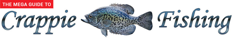 Crappie Fishing Information – Prime Game Fish