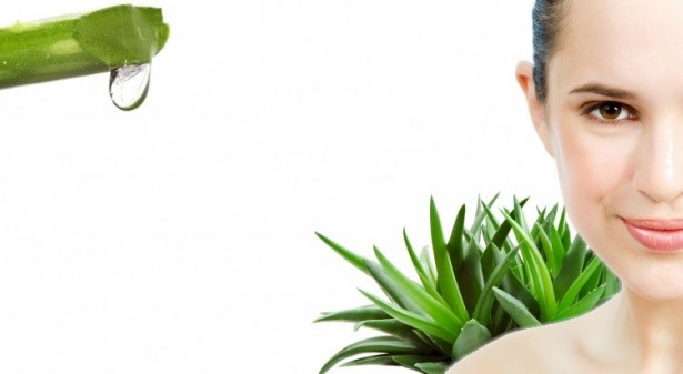 Organic Skin Care Recipes - Natural Aloe Vera Beauty Woman