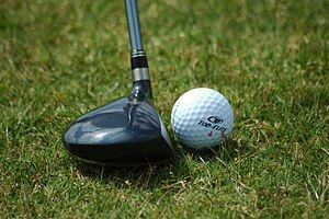 Golf Swing Driver - Driving Force - An Introduction to Golf Swing Drivers